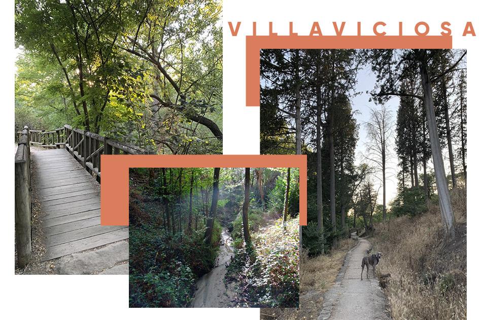 Ruta verde en Villaviciosa