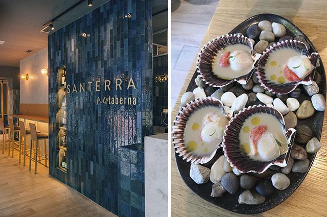 Restaurante Neotaberna Saterra Madrid
