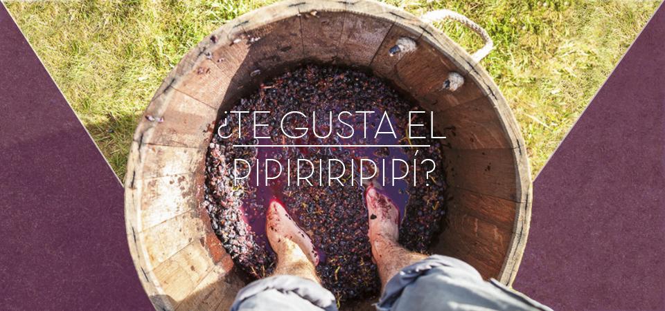 Escapada vinícola a las afueras de Madrid