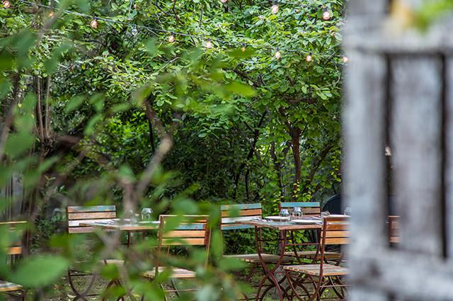 Cenas de verano en el Olivar de Castillejo